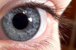 closeup blue/grey eye