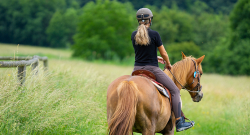 Young women ridding horse